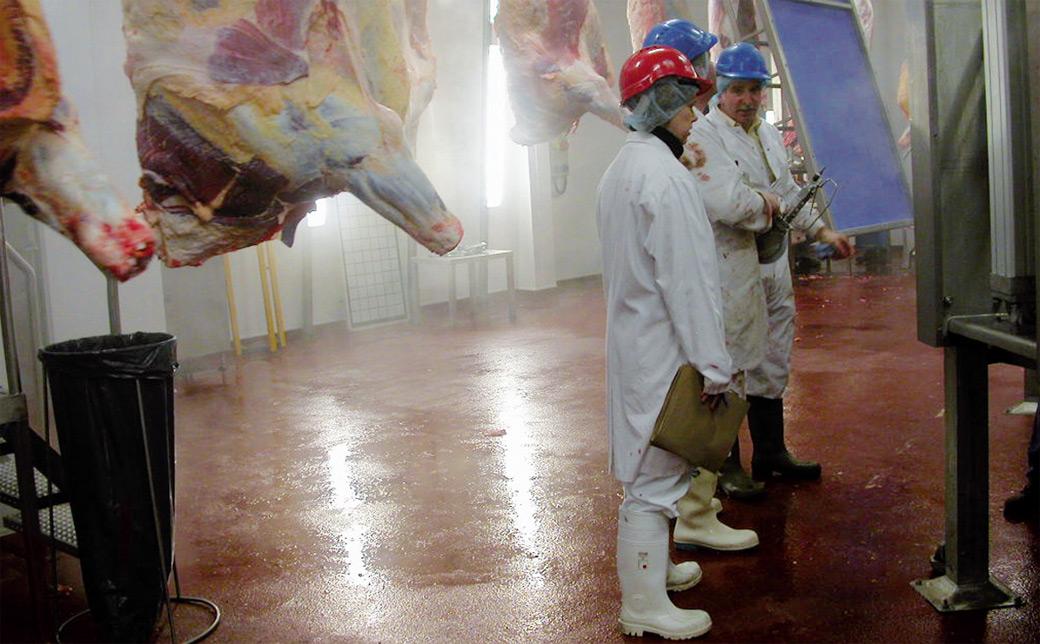 Podovi u industriji mesa