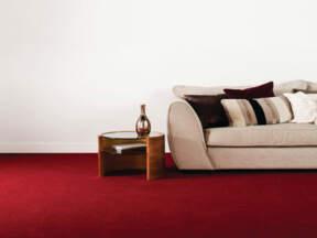 Bogati izgled tepiha