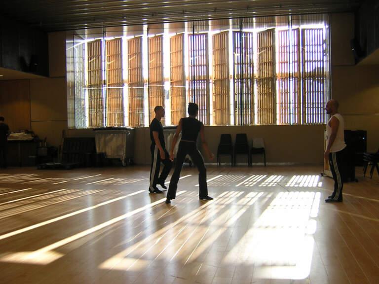 Održavanje Harlekin vinil podova za ples