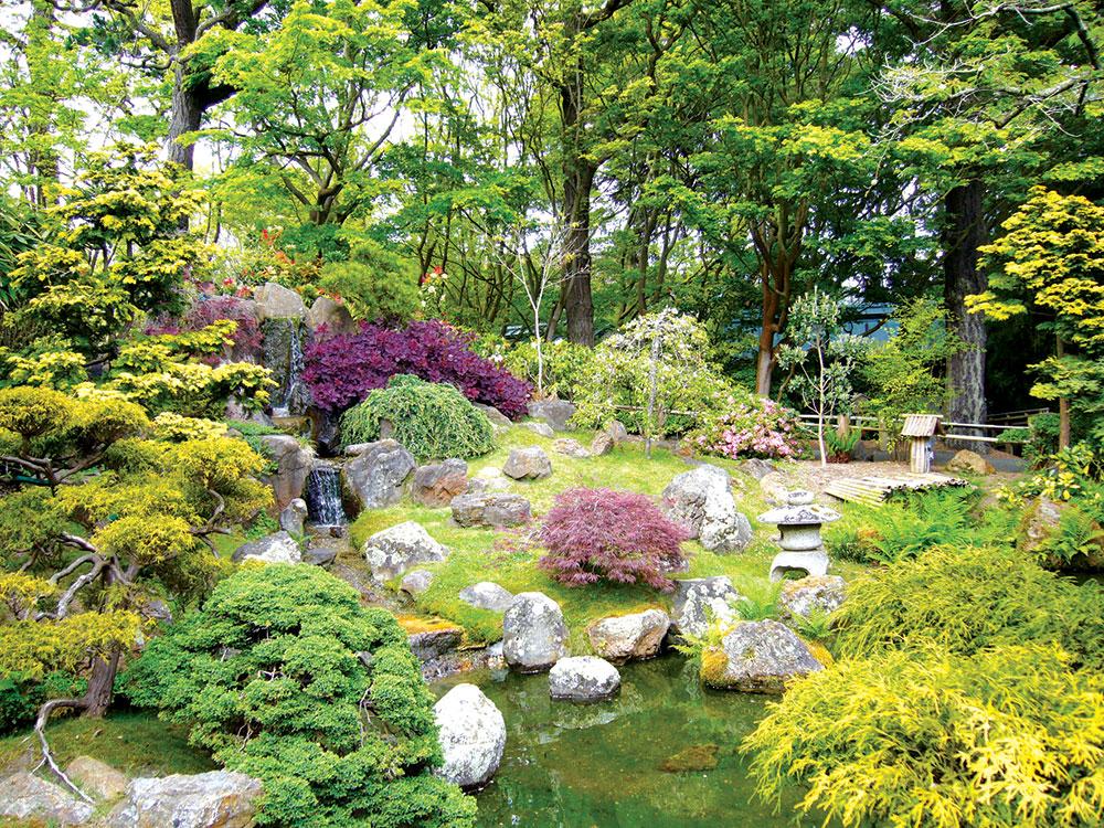 Zeleni lavirint - uređenje dvorišta
