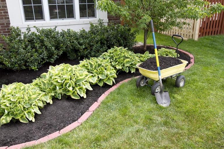 Dizajn kreacija i uređenje bašta i dvorišta