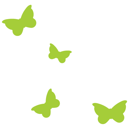 TIm-izolirka-butterfly-01