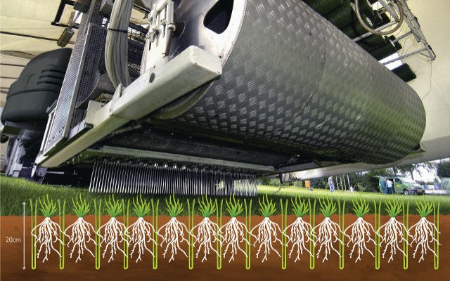 Tarket hibridna trava 3x izdržljivija od klasične trave