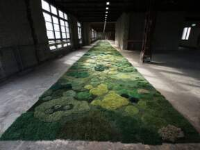 Pogledajte kako se pravi tepih od 145 kvadrata