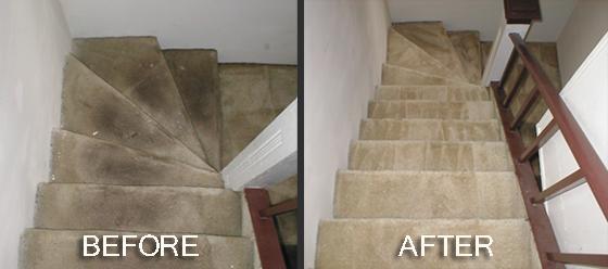 Pre i posle profesionalnog čišćenja tepiha