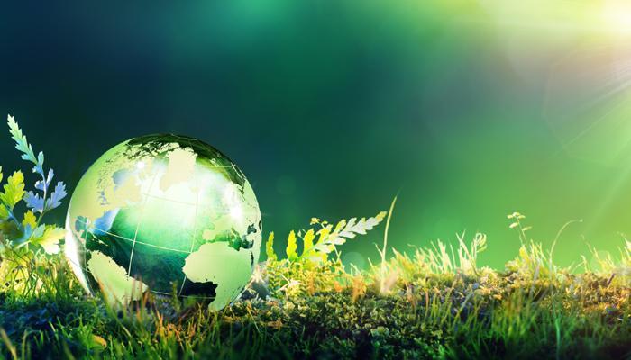 Stručnjaci upozoravaju da je čovek svojim delovanjem doveo do dramatičnog zagađenja životne sredine