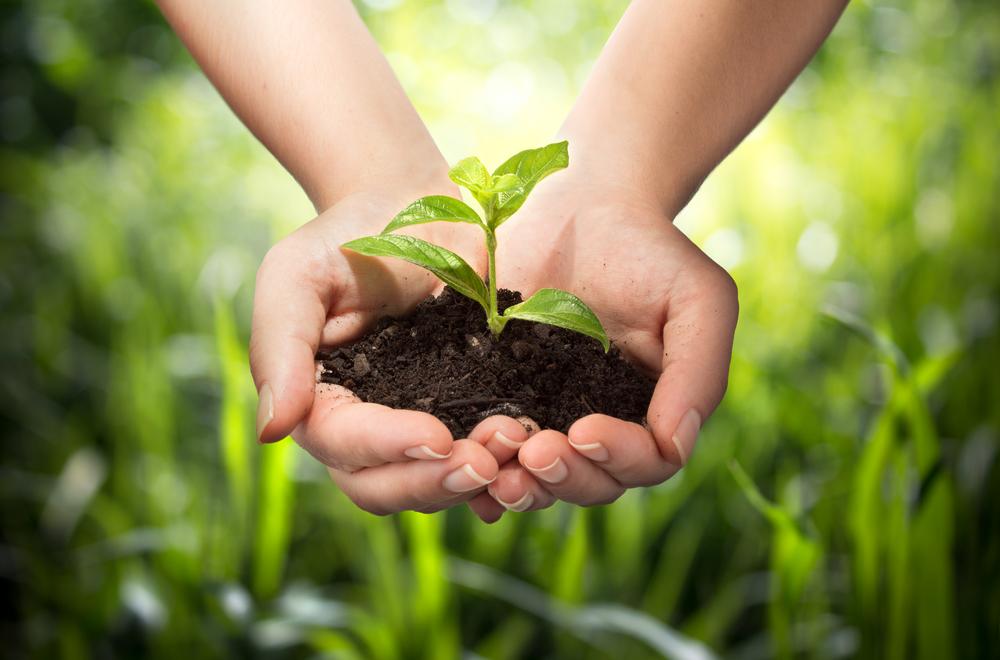 Nikada nije kasno da se osvestimo i čuvamo planetu