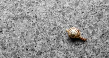 Granit je najčešće u upotrebi kao kuhinjski materijal