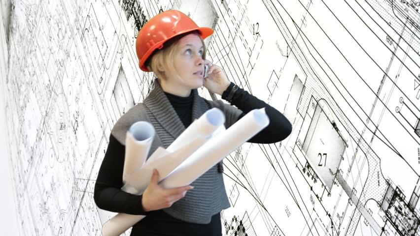 Profesionalni naziv – ovlašćeni arhitekta sticao bi se posedovanjem profesionalnih kvalifikacija