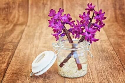 Drveni pod i cveće