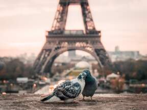 Ajfelova kula, Pariz, Francuska