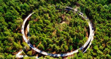 Biciklistička staza među drvećem (foto: Visit Limburg)