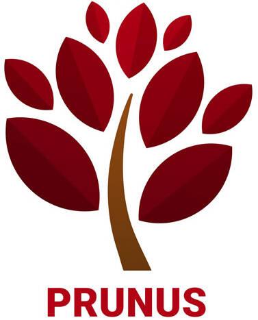Prunus logo